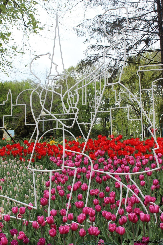 Выставка тюльпанов 2018