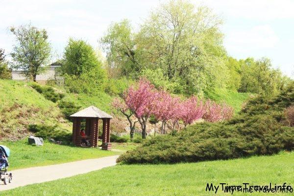 Цветущий ботанический сад
