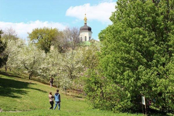 Магнолии и Свято-Троицкий Ионовский монастырь
