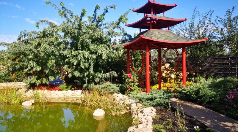 Парк Камелия – наслаждаемся последними тёплыми деньками