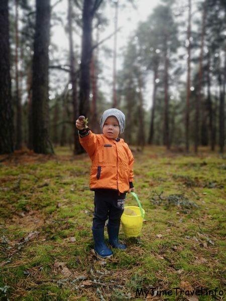 Ребенок собирает грибы в лесу