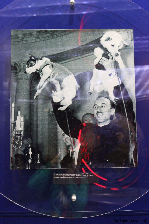 Памятное фото о благополучном возвращении Белки и Стрелки на Землю