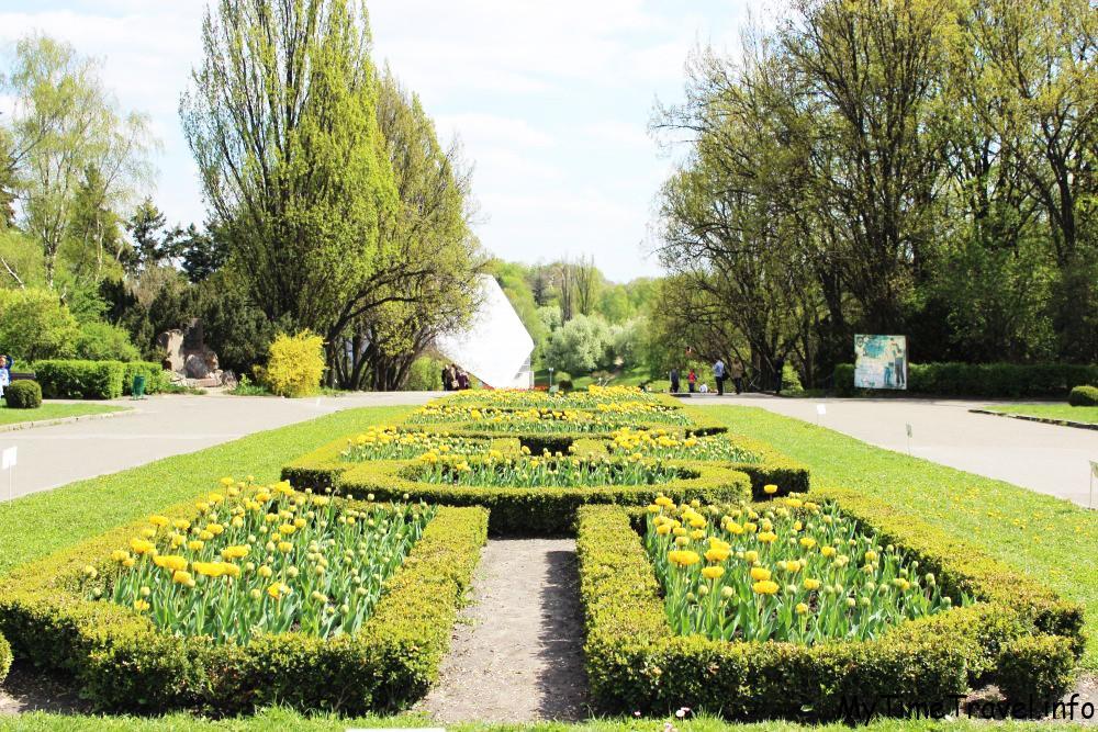 Ботанический сад им. ММ. Гришка