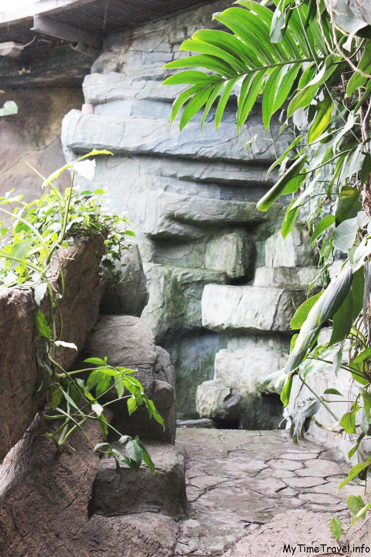 Эдемский сад в ботаническом саду