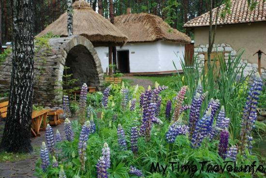 Украинское село под Киевом