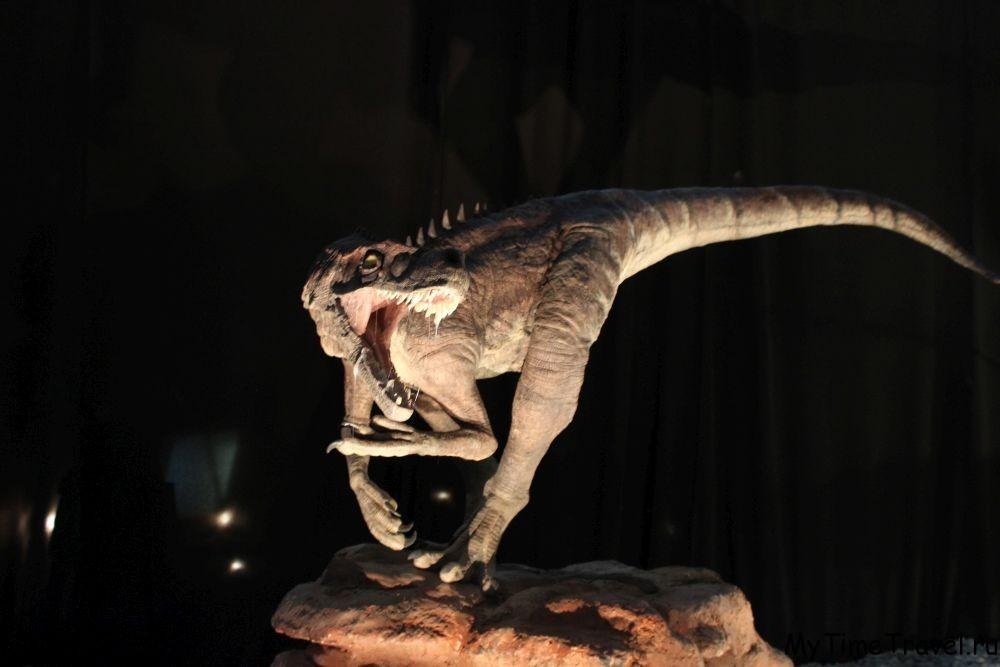 Выставка динозавров в Будве